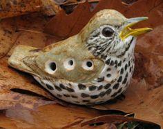 Картинки по запросу ocarina birds