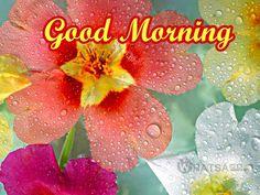 #goodmorning..!!