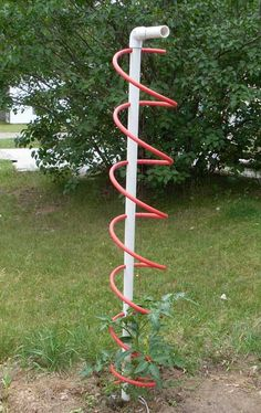 Tormato Trellis  10 ft of 1 1/4 inch PVC is about $2.00, 20 feet of 1/2 inch Pex is about $6.00. Total $10/ea