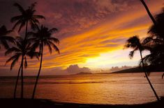 A beautiful tropical sunset...Hawaii is definitely on the list of places to visit!