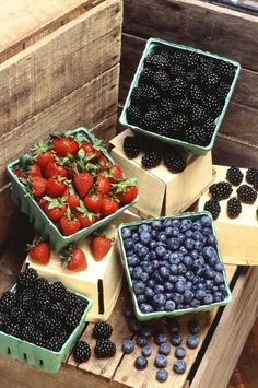 We are not too picky when it comes to homemade berry jam, any mix or single berry jam fast becomes a favorite in our house. With all the recipes. Healthy Fruits, Fruits And Veggies, Healthy Snacks, Eating Healthy, Healthy Recipes, Healthy Mind, Vegetables, Healthy Weight, Healthy Eats