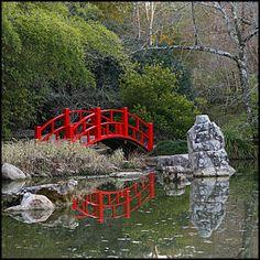 japanese garden Brooklyn Botanic Garden