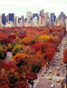 Colours of New York