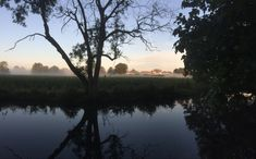 Misty sunrise at Ripon Canal Sunrise, River, Celestial, Outdoor, Outdoors, Outdoor Games, The Great Outdoors, Sunrises, Rivers