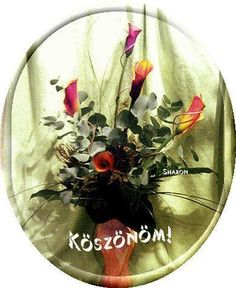 Köszönöm a köszöntést Flower Aesthetic, Christmas Bulbs, Happy Birthday, Holiday Decor, Flowers, Album, Home Decor, Google, Tulips