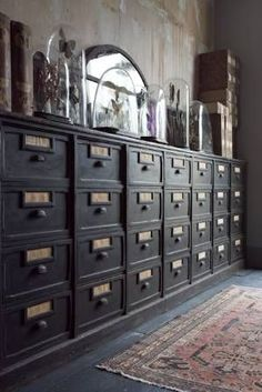 Beautiful black filing drawers, with brass handles and bell jars.