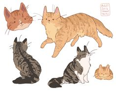 "hamotzi: "" striped longhaired cats! """