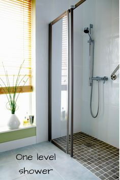 There are so many awesome options for bathroom remodels. Here's a cool one to consider: It is possible to have a one level shower that provides unique, high end style and safety at the same time. Really cool!