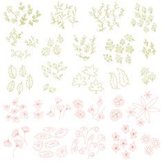 Spring Leaves  Flowers Clipart // Hand Drawn // by thePENandBRUSH