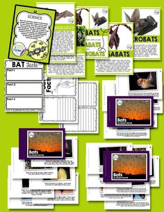 There are full-colour informative posters, and a research activity with levelled readers for independent work. diagrams for labelling and the life cycle.  There are ELA activities too.There are sorting activities, full colour photos of bats, step-by-step drawing activities, and evaluative activities too.
