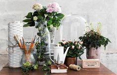 Цветы в интерьере:  оригинальные способы озеленить квартиру