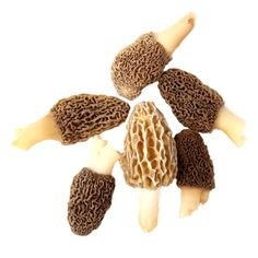 Well-known chefs have already prepared the most amazing desserts with this spring mushroom. And you?