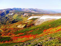 紅葉の大雪山・黒岳と赤岳~緑岳