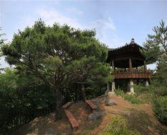 トングレ山の八角亭 - WolMyeongDong(キリスト教福音宣教会)