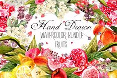 Hand Drawn Watercolor Bundle FRUITS by knopazyzy on @creativemarket