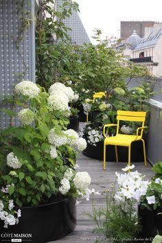 Une terrasse pourtan