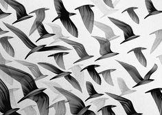 migration west mural – st katharine docks – london by kai & sunny