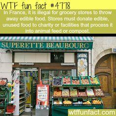 ﴾͡๏̯͡๏﴿ Ƒմɳ ֆ Ïɳ৳ҽɽҽʂ৳Ꭵɳɠ Ƒąç৳ʂ ﴾͡๏̯͡๏﴿ ᏇɦᎧ ҠɳҽᏇ? ﴾͡๏̯͡๏﴿ ~ Such a good Idea France food laws - WTF fun facts. We need that in America