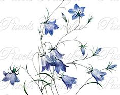 forget me not flower and blue bell flower tattoo - Google Search