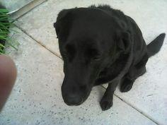 Cute Laila!
