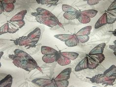 8X11 Leather Material Colorful Butterflies by worldofpineapple, $13.40
