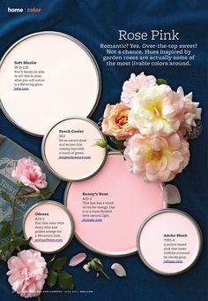 Paint Palette – Rose Pink Pink hues inspired by garden roses. Paint Colors Used: Soft Muslin by Behr Peach Cooler by Benjamin Moore Bunny's Nose by Olympic Odessa by Ace … Read Colour Schemes, Color Combos, Colour Palettes, Wall Colors, House Colors, Interior Paint Colors, Home And Deco, Color Pallets, My New Room