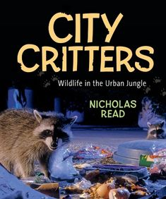 """Read """"City Critters: Wildlife in the Urban Jungle Wildlife in the Urban Jungle"""" by Nicholas Read available from Rakuten Kobo. When we think of wild animals, we don't immediately associate them with the cities we live in. But a closer look soon re. Reading City, Deer Running, Fiction And Nonfiction, Animal Books, Book Publishing, Baby Animals, Wild Animals, Good Books, Skunks"""