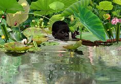 Ruud van Empel works and lives in Amsterdam, The Netherlands Sweet Station