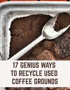 coffee grounds for plants \ coffee grounds for plants ; coffee grounds for plants how to use ; coffee grounds for plants roses ; coffee grounds for plants gardens Uses For Coffee Grounds, Coffee Uses, Coffee Grounds Garden, Gardening For Beginners, Gardening Tips, Ways To Recycle, Repurpose, Reuse, Garden Compost