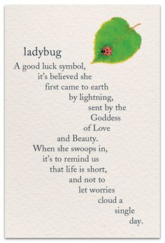 Inside Message: Here's hoping a little ladybug uses you as her landing strip today. Motivacional Quotes, Words Quotes, Wise Words, Qoutes, Symbols And Meanings, Mayan Symbols, Viking Symbols, Egyptian Symbols, Viking Runes