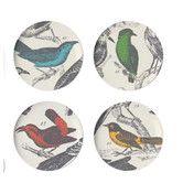 Found it at AllModern - Ornithology Dessert Plate (Set of 4)