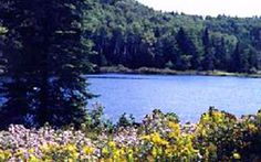 New York, New York - Westchester County Department of Parks and Recreation and Conservation, Cranberry Lake Preserve