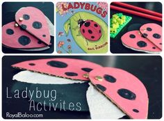 Ladybug Activities to go with Ladybugs by Gail Gibbons