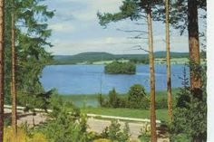 swedish nature Golf Courses, Nature, Nature Illustration, Off Grid, Mother Nature