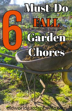 6 Must-Do Fall Vegetable Garden Chores For A Healthy Garden! - - How you put a garden to bed this year makes a big difference in how it performs next year! See our 6 Must-do Fall Vegetable Garden Chores!