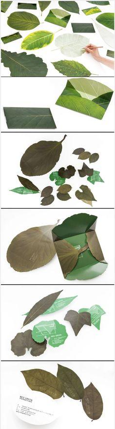 잎을 사용해서 편지지를 디자인 한다는 발상이 너무 마음에 들었고 자연의 느낌을 들어 편안함을 조성하는 디자인. Japanese design studios neo-green and eding:post have collaborated on 'leaf letter', a series of postcards, stationary and envelopes in the shape of leaves. Love this invitation packaging concept PD: