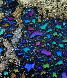 rainbow puddle. oil spill. water. parking lot.