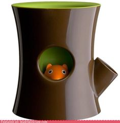 It's a flower pot! You can water the plant through the side branch, and the squirrel will float and pop his head up. When he is hiding back down in his hole, you know you need to water it again! So cute and useful for those like me who kill plants....