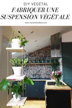 Fabriquer une suspension végétale / DIY déco / green diy