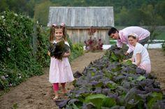 Good read from my favorite seed provider Baker Creek (rareseeds.com) - Teach the Children to Love the Garden.