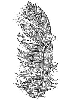 Feathers Coloring Page 7 By Artist Anna Witton | Adult Coloring ...