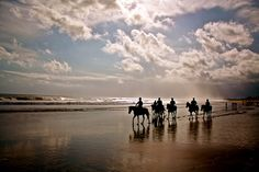 Would u like to horse ride along Bali beaches during a tour?  Contact www.rudisbalitours.com