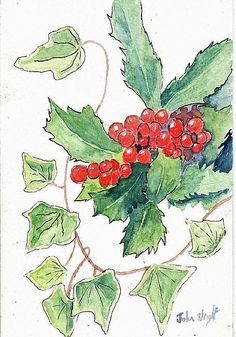 AOTD: Holly and Ivy by John Wright #EBSQ