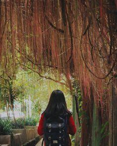 Dazzling wishes two a Lovely Person on a Lovely Day .  Inframe: Me  Location: Baksil Bandung Westjava Taken by: @kamanaweh_ .  #liveadventurously #adventures #folkscenery #folks #folkportraits #followforfollow #folkcreatives #folkworld #potraits #potraitpeople #keluarsebentar #kerengan  #explorejabar #indonesiantraveler #helloindonesian #livefolk #vsco #vscogood #feedbacknation #vscomood #photooftheday #livefolkindonesia #nature #igers #igersociety #travelgram #traveler #folkvibe…