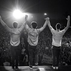 Jonas Brothers Update: Argentina Concert Video, Crazy Fans!