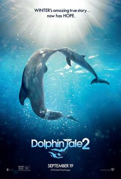 Dolphin Tale 2 27x40 Movie Poster (2014)