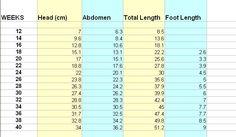 Preemie Clothing Tips ~ Size chart in cm has body sizes of preemies, micro-preemies, and Angel Babies (deceased).