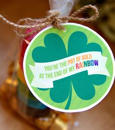 I could repin St. Patrick's day treats ALL day!!!  Rainbow Cookie St. Patrick's Day Party Favors