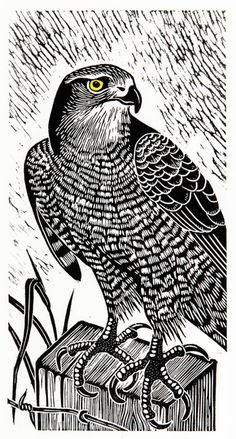 Hawk on Lookout artist Dona Reed. I like the way the plumage has been carved.