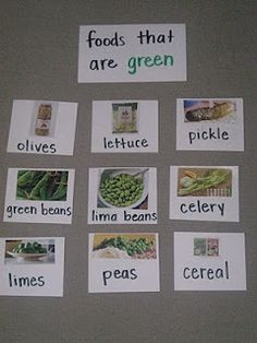"""For my """"green"""" story time -- useful for St. Patrick's Day or a tie in with """"Green Eggs and Ham"""""""